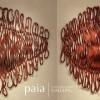 Abstract sculptures by abstract artist Caprice Pierucci at www.paiacontemporarygallery.com