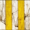 Abstract artwork by abstract artist Michael Kessler at www.paiacontemporarygallery.com