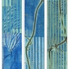 Eudemon (Triptych) -  acrylic on panel - 12 x 79 inches each panel - year 2012 - at Paia Contemporary Gallery