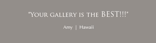 amy-hawaii-trojan-pro-12-and-14-signature-optima-10